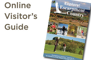 Click for Online Visitor's Guide