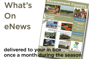Sign up for our What's On eNewsletter